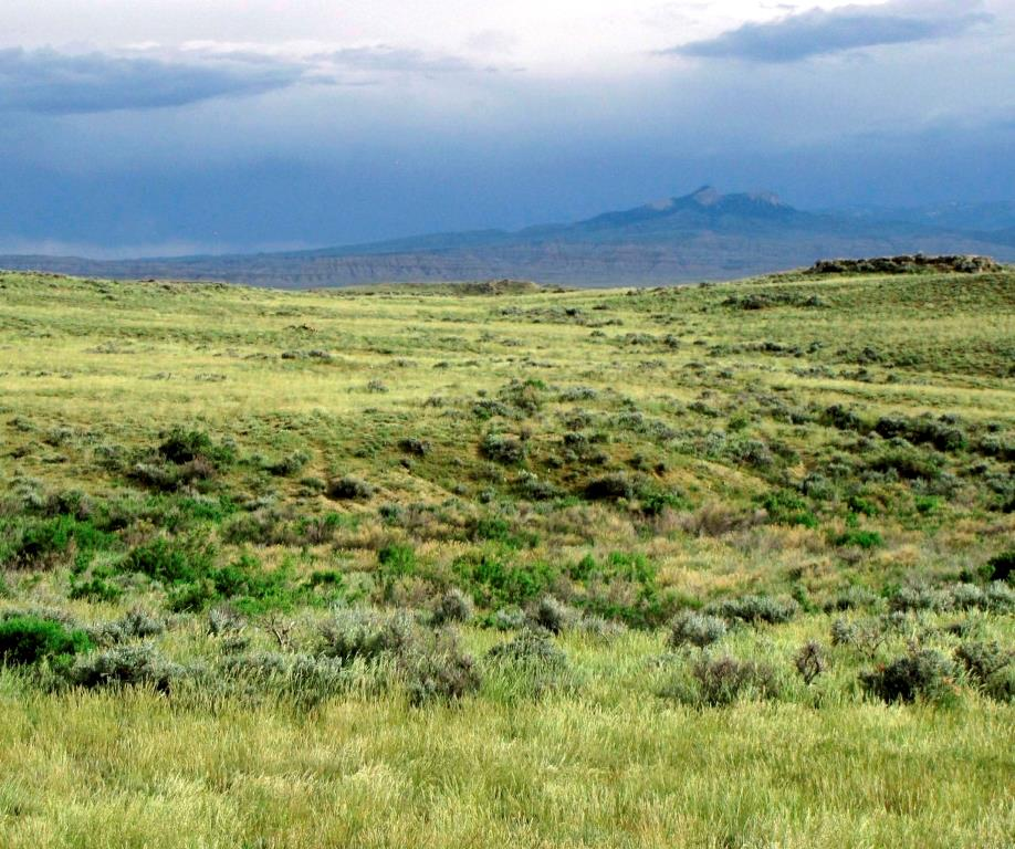 10013085 Clark, WY - Wyoming property for sale