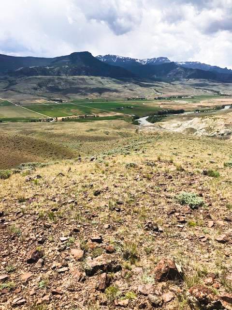 10014699 Wapiti, WY - Wyoming property for sale