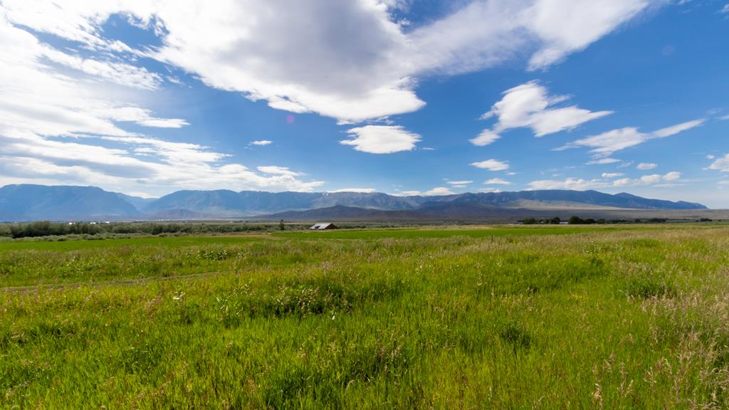 10014732 Clark, WY - Wyoming property for sale