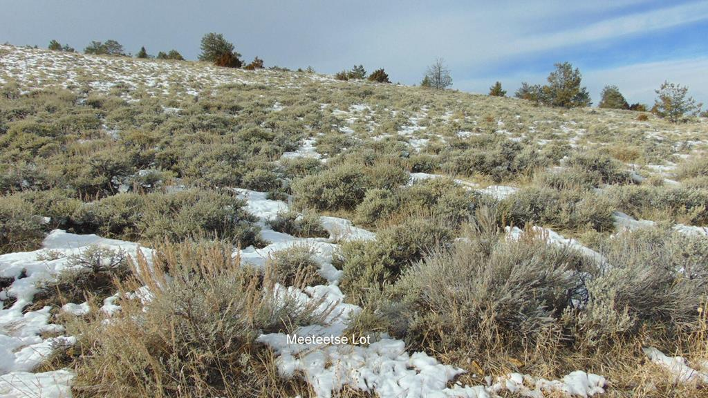 10015563 Meeteetse, WY - Wyoming property for sale