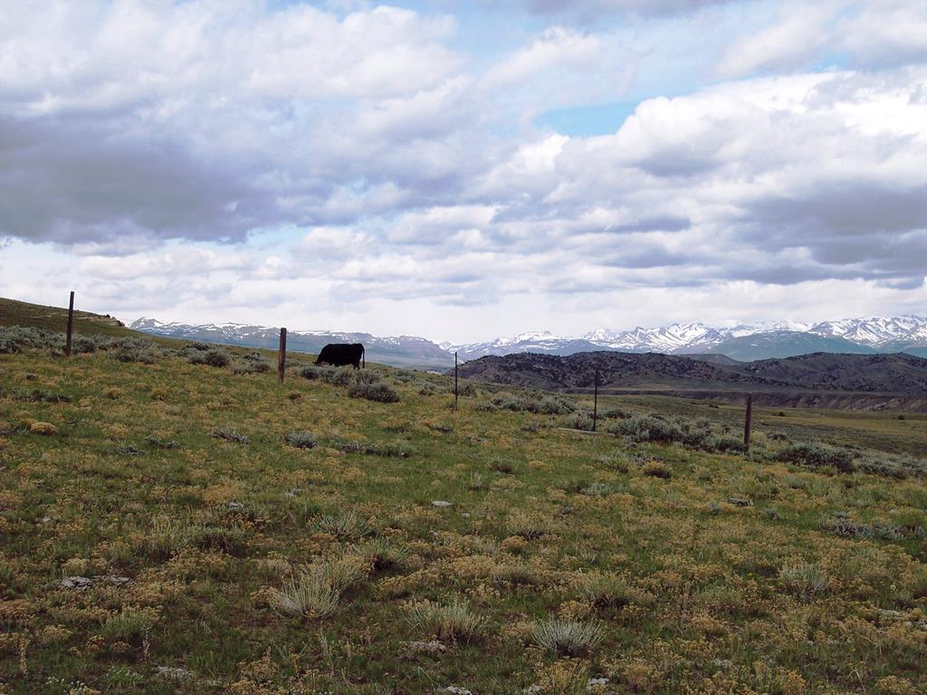 10015652 Meeteetse, WY - Wyoming property for sale