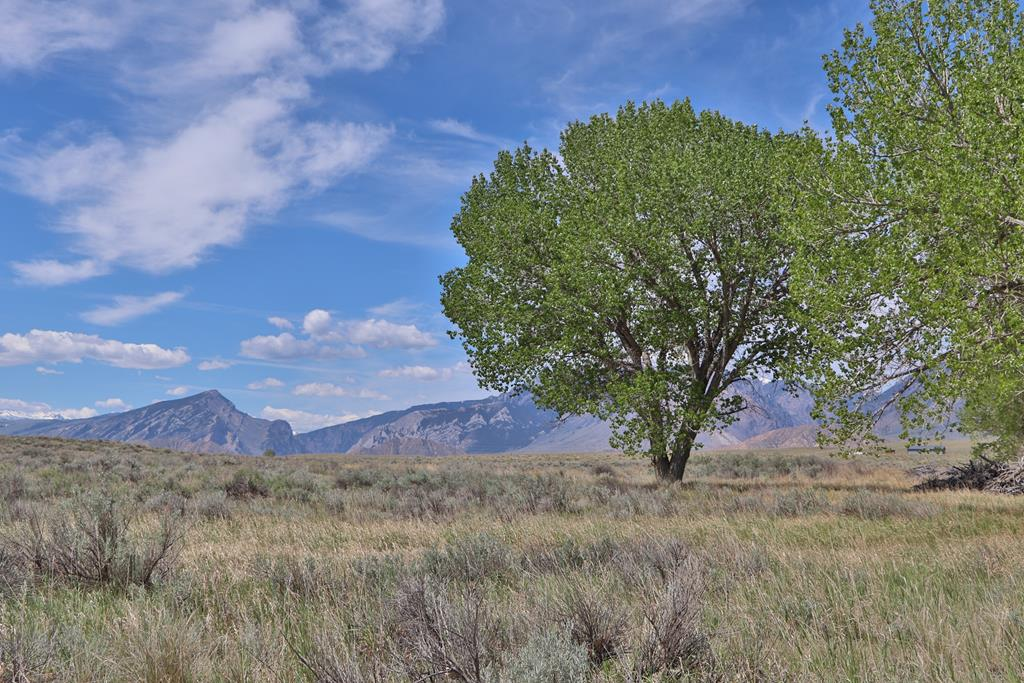10017023 Clark, WY - Wyoming property for sale